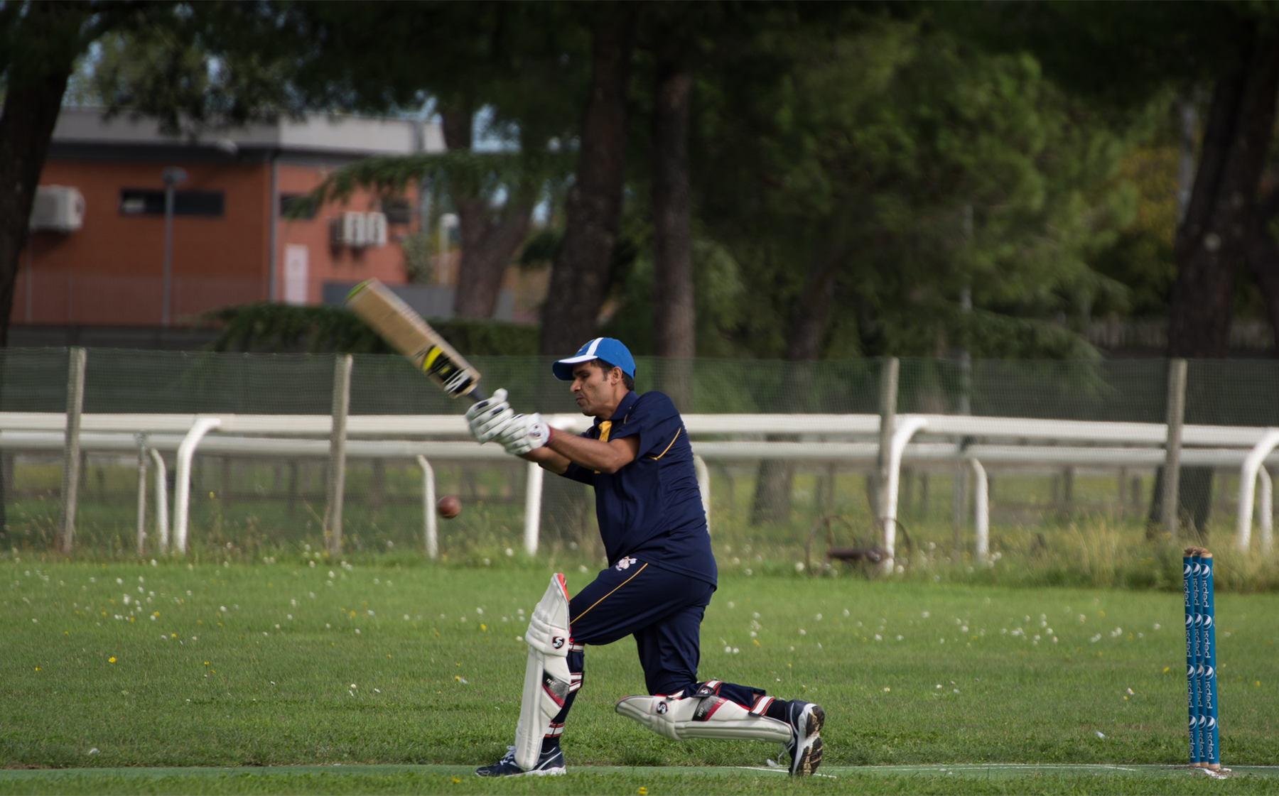 Finding Common Ground on the Cricket Pitch - Regnum Christi